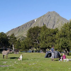 Camping sauvage aux Camporells
