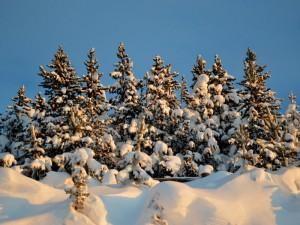 L'hiver à Formiguères