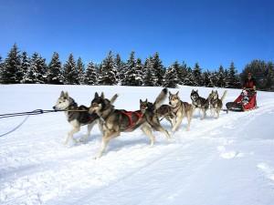 Découvrez les activités hivernales de Formiguères
